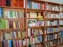 О секторе краеведения